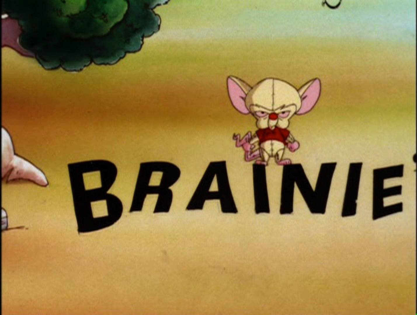 Brainie the Poo